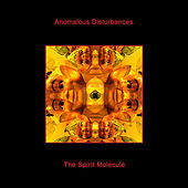 The Spirit Molecule by Anomalous Disturbances