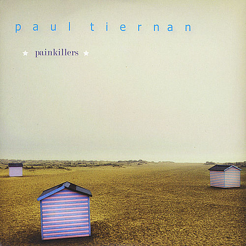 Painkillers by Paul Tiernan