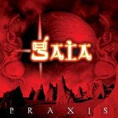 Praxis by Gaia