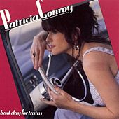 Bad Day for Trains by Patricia Conroy