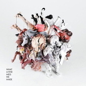 What A Fine Mess We Made by Various Artists