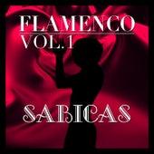 Flamenco: Sabicas Vol.1 by Sabicas