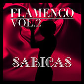 Flamenco: Sabicas Vol.2 by Sabicas