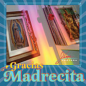 Gracias Madrecita by Jorge Santana
