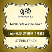 I Wanna Know How It Feels (Studio Track) by Karen Peck & New River