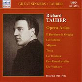 Tauber, Richard: Opera Arias (1919-1926) by Various Artists