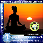 Subliminal - Meditation, Enlightenment, Karmic Good, Live In The Now & More by Brain Entrainment Mindware