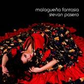 Malaguena Fantasia (guitar and percussion) by Stevan Pasero