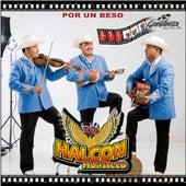 Por Un Beso by Trio Halcon Huasteco