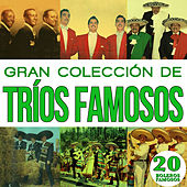 Gran Colección de Trios Famosos 20 Boleros Famosos. Vol.2 by Various Artists