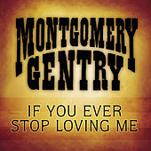 If You Ever Stop Loving Me by Montgomery Gentry