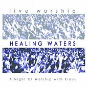 Healing Waters by Klaus & Klaus