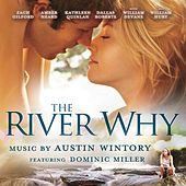 The River Why by Austin Wintory