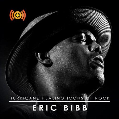 Icons of Rock: Eric Bibb by Eric Bibb