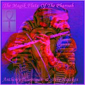 The Magik Flute Of The Pharoah by Pete Hawkes
