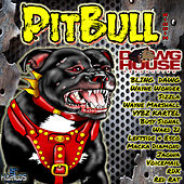 Pitbull Riddim by Various Artists