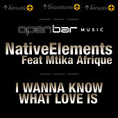I Wanna Know What love Is by Native Elements