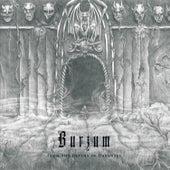 The Depths of Darkness by Burzum