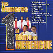 Tus Numeros 1 al Ritmo de Merengue by Various Artists