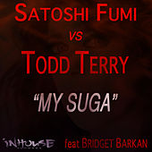 My Suga by Todd Terry