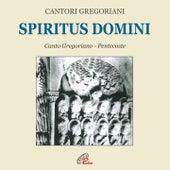 Spiritus domini by Fulvio Rampi Cantori Gregoriani