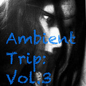 Ambient Trip: Vol.3 by Various Artists