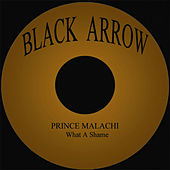 What A Shame by Prince Malachi