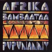 Pupunanny by Afrika Bambaataa