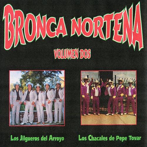Bronca Nortena, Vol. 2 by Various Artists