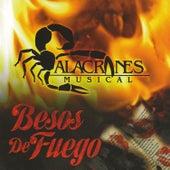 Besos De Fuego by Alacranes Musical