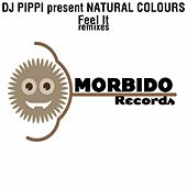 Feel It Remixes by DJ Pippi