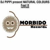 Feel It Remixes by DJ Pippi