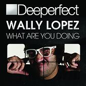 What Are You Doing by Wally Lopez