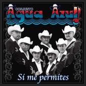 Si Me Permites by Conjunto Agua Azul (1)