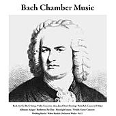 Bach: Air On the G String/Violin Concertos/Jesu, Joy of Man's Desiring / Pachelbel: Canon in D Major / Albinoni: Adagio / Beethoven: Fur Elise/Moonlight Sonata / Vivaldi: Guitar Concerto / Wedding March / Walter Rinaldi: Orchestral Works, Vol. I by Bach Chamber Music