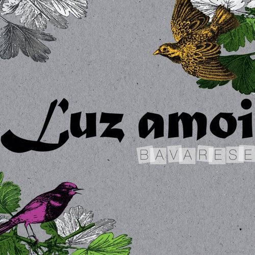 Bavarese by Luz amoi