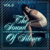 The Sound of Silence, Vol. 2 (Taste of Erotic Ambient Lounge and Chill Out) by Various Artists