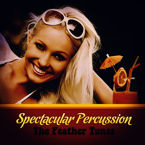 Spectacular Percussion by The Feather Tunes