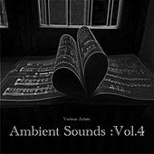 Ambient Sounds :Vol.4 by Various Artists