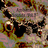 Ambient Sounds :Vol.3 by Various Artists