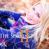 The Soaking Room, Vol. 2. by Laura Rhinehart