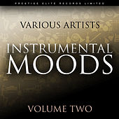 Instrumental Moods Vol 2 by Various Artists