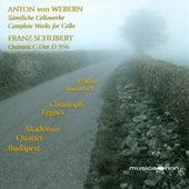 Weber, A.: 2 Pieces / 3 Little Pieces / Cello Sonata / Schubert, F.: String Quintet, Op. 163 by Martin Rummel