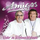 Unter'm Weihnachtsbaum by Amigos