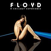 Floyd: A Chillout Experience by Lazy