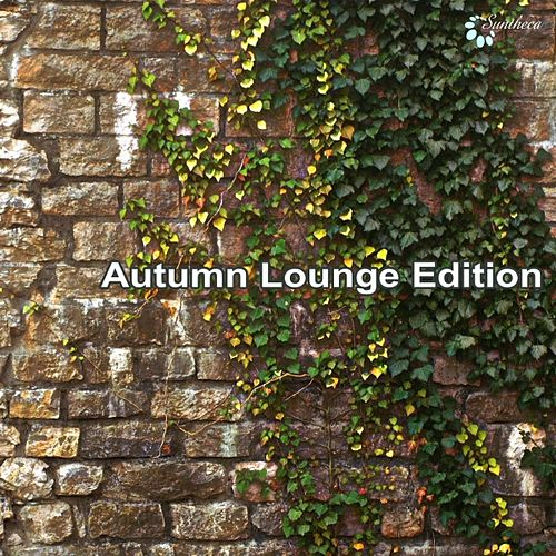 Autumn Lounge Edition by Various Artists