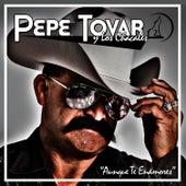 Aunque Te Enamores by Pepe Tovar Y Los Chacales