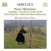 Sibelius: Piano Music, Vol. 4 by Havard Gimse