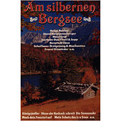Am silbernen Bergsee by Various Artists