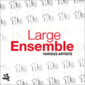 Large Ensemble by Various Artists
